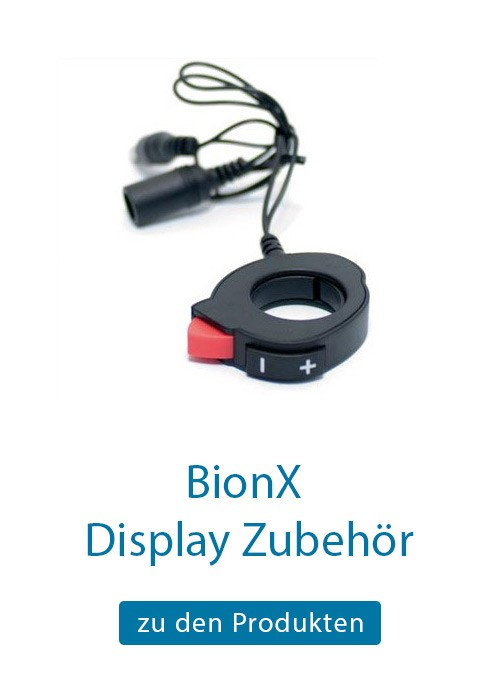 BionX Display